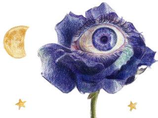 Rosa lunar